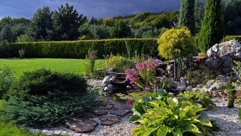 Come fare un giardino roccioso: idee e consigli