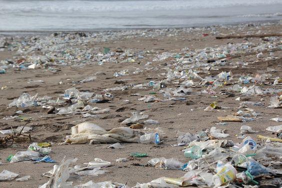 Tassa rifiuti: novità, calcolo dei costi al mq e scadenze