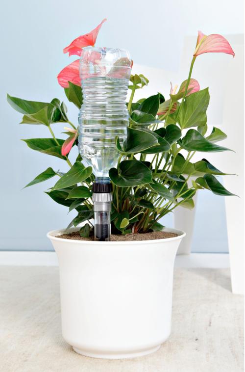 Goccia a Goccia irrigazione costante: quanto dura? Si adatta alle piante? Opinioni e recensioni, prezzo in offerta